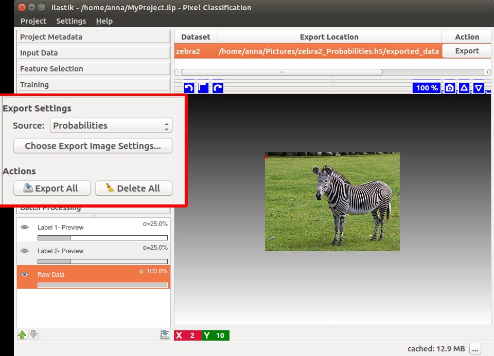 ilastik - Exporting Output