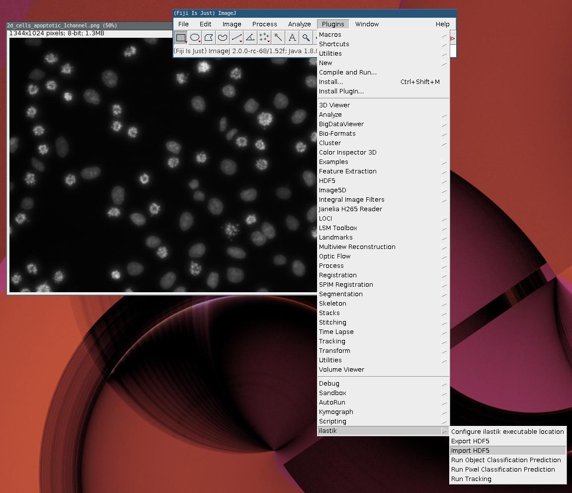 ilastik - FIJI import/export plugin